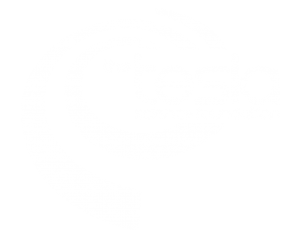 tsf-logo-white